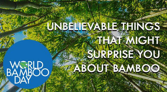 World Bamboo Day 2019